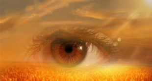Clairvoyance, Visions, and Predicting the Future